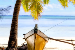 Fisherman's paradise (geemuses) Tags: aitutaki cookislands southpacific pacificislands water sea ocean lagoon scenic scenery nature landscape trees palms rocks sand blue green standuppaddleboard
