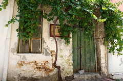 Grapes (++Rob++) Tags: greece griekenland crete kreta grapes druiven avdou