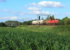 DB Cargo 6412 @ Herfte Aansluiting (Sicco Dierdorp) Tags: db dbc cargo serie6400 onnen kijfhoek herfte aansluiting meppel zwolle ketelwagen keteltrein