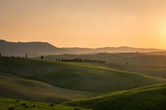 DSC_0662.jpg (saladino85) Tags: tuscana tuscany scenery sunset trees italy green hills typical holiday landscape