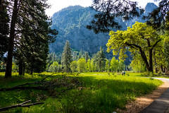 Yosemite Valley (randyherring) Tags: recreational nationalparksystem historic park yosemitenationalpark ca mountains beauty outdoor vacation tourism california nature yosemitevalley unitedstates us