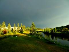 The uncanny beauty of a thunderstorm (peggyhr) Tags: peggyhr light shadows trees clouds sky dark foreboding dsc03140a bluebirdestates alberta canada super~sixbronze☆stage1☆ level1pfr
