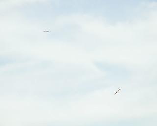 dúo volador