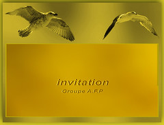 Invitation  Groupe A.F.P (MUMU.09) Tags: invitation