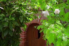S.MasséMaisonduMajordome©TourismeHautLimousin-53 (tourisme_hautlimousin) Tags: jardin gîte vacances hautlimousin patrimoine location fleurs botanique tourolim