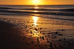 Early morning golden reflections (Kirkleyjohn) Tags: sands beach sea seaside seashore seascape sun sunrise morning morninglight reflection lowestoft lowestoftsouthbeach kirkley