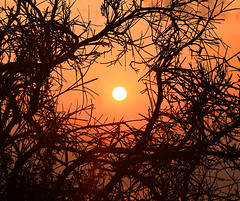Be.. yond (Robyn Hooz) Tags: sole tramonto eolie thorns spine valle mostri vulcano isola sicilia vacanza