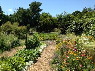 The Ecological Garden, University of California at Davis.