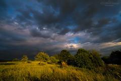 Clouds and sun -  explore (Rita Eberle-Wessner) Tags: landschaft landscape wiesen meadows wiese wolken clouds sky himmel baum bäume tree trees grass gras sonne odenwald
