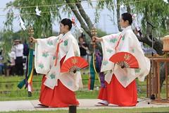 Shrine Maiden Dance (Miko) (seiji2012) Tags: 巫女 結婚式 水郷佐原あやめ祭り 神道 踊り 扇子 神楽 香取市 佐原 あやめパーク dance wedding shinto shrine sawara fan costume festival