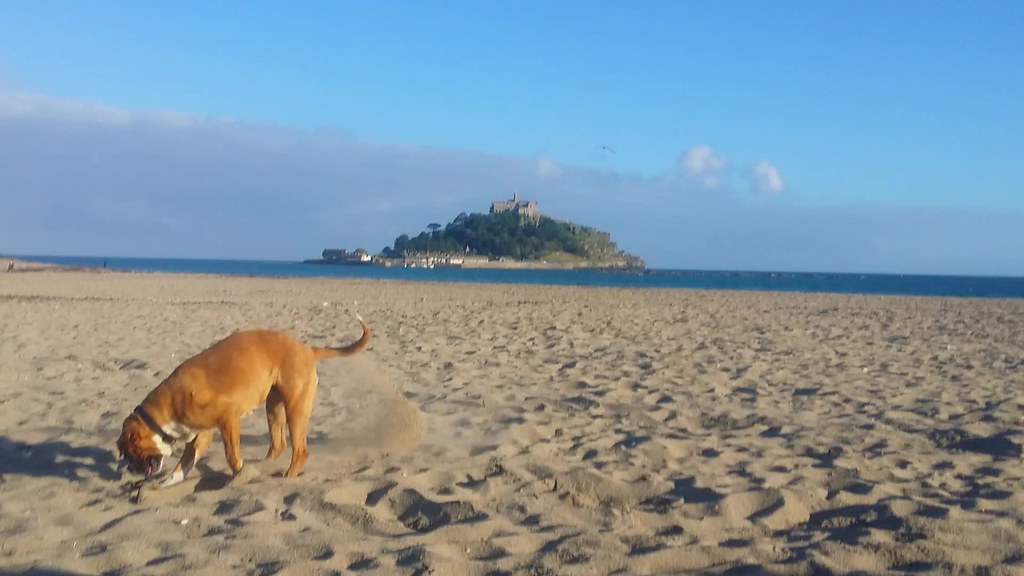 Reba on the beach at Marazion