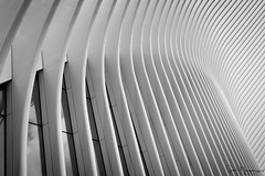 LINES, New York (SNeequaye) Tags: newyork nyc usa us nikon nikond750 d750 tamron2470mm nikon1635mm tamron70200mm nikon105mmfisheye fisheye timesquare manhattan lowermanhattan freedomtower oneworldtradecentre 911 groundzero manhattanbridge brooklynbridge chinatown soho chelsea midtown uptown centralpark statueofliberty empirestatebuilding chryslerbuilding flatironbuilding avenue 911memorial skyline blackwhite bw grandcentralterminal metlife reflection rockefellercentre hudsonriver eastriver brooklyn bronx queens harlem night sky exposures panorama 432parkavenue 8sprucestreet view clouds people bridges colour architectural statenislandferry verrazanobridge sunset sunrise newjersey jerseycity exchangeplace brooklynbridgepark brooklynpromenade worldsbestskyline lowermanhattanskyline midtownskyline leebigstopper ndfilter stpatrickscathedral
