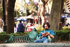 Bench in Coyoacan 301 (L Urquiza) Tags: coyoacán mexico city ciudad cdmx people public area reading branch bench