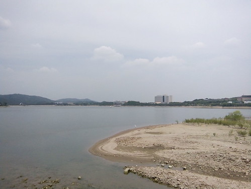 Gyeongju, Boman Lake, Birds on Lake