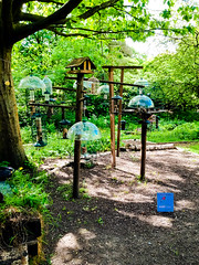 So many bird feeders (Andy Hay) Tags: 2017 bird didsbury feeders fletchermosspark lightroom manchester england unitedkingdom