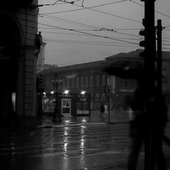 Is that your parapieuva? (DAncientMariner) Tags: bw italy noire piazzacastello rain sad street torino turin winter geo:lat=45070655555555 geocountry geocity camera:make=nikon geostate exif:focallength=116mm geolocation geo:lon=76841111111117 exif:isospeed=200 exif:model=coolpixl23 camera:model=coolpixl23 exif:make=nikon exif:aperture=ƒ48