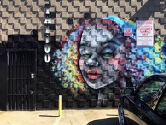 Mosaic (misterbigidea) Tags: business colorful window reflection squares mosaic portrait face beauty urban city street mural graffiti painted artwork art wall building cinderblock entrance sign shop parlor tattoo