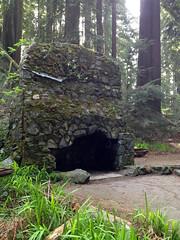 SequoiaPark032413n (homeboy63) Tags: spring 2013 humboldt sequoiapark eureka