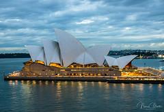Sydney Opera House (Norma Martiri) Tags: sydney bluehour architecture sydneyoperahouse nsw travel longexposure harbour