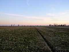 IMG_20170225_180114 (storvandre) Tags: storvandre lombardia lombardy countryside campagna nature landscape road zibido milano parco agricolo