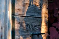 """Roma. Abandoned farmhouse. """"Note Nere vol. II"""" exhibition by S.Gore, X, Jerico. X silhouette (R come Rit@) Tags: italia italy roma rome ritarestifo photography streetphotography urbanexploration exploration urbex streetart arte art arteurbana streetartphotography urbanart urban wall walls wallart graffiti graff graffitiart muro muri artwork streetartroma streetartrome romestreetart romastreetart graffitiroma graffitirome romegraffiti romeurbanart urbanartroma streetartitaly italystreetart contemporaryart artecontemporanea artedistrada underground installation installations installazioni installazione abandonedfarmhouse abandon abandonedplaces abbandono abbandonato notenerevolii notenere exhibition mostra exhibit groupshow samuelegore gore sgore x andreax jerico silhouette portrait ritratto ombra shadow shadows profilo room stanza tenutaditormarancia"""