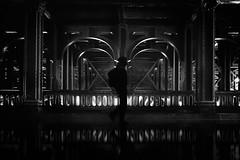...voyageur... (*ines_maria) Tags: dmcgx8 panasonic streetphotography street woman monchrome bw blackandwhite reflection architecture people sky travel urbanart urban city silhouette light bridge paris pont france alexandre pontalexandre