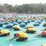 "International_Yoga_Day_2017 (120) <a style=""margin-left:10px; font-size:0.8em;"" href=""http://www.flickr.com/photos/127628806@N02/35104885693/"" target=""_blank"">@flickr</a>"