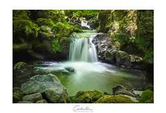 Cascade de Chiloza (MagiCshoot) Tags: cascade auvergne chiloza rock caillou riviere eau vert foret sousbois longexposure france x100s fuji plante ruisseau mousse falls