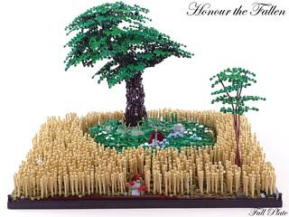 Honour the Fallen (6 of 6)
