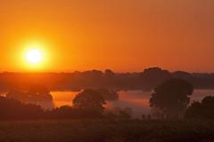 Früh morgens an der Nebelsenke (Lilongwe2007) Tags: ammersbek schleswig holstein sonnenaufgang bodennebel aussichtspunkt schüberg nebel morgens natur landschaft