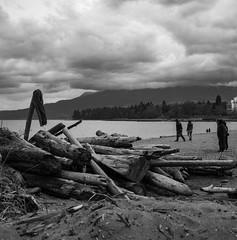(glauberpitfall) Tags: filmphotography yashicamat124g yashinon80mm kodak 400tx blackandwhite monochrome beach englishbaybeach vancouver britishcolumbia bc canada