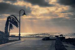 Amanecer ventoso (Inmacor) Tags: lanzarote playa isla amanecer sunrise inmacor perros agua mar beach wind