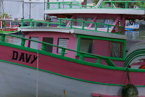 brazil-paraty-pink-tourist-boat-copyright-pura-aventura-thomas-power
