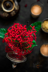 Rangan or Ixora coccinea (Flame of the woods) (Rimli D) Tags: foodphotography foodblog foodpicture foodblogger foodporn festivalfood food festival indianfood iamnikon indianfestivals indiandessert indianstaples darkphotography stillphotography stilllife styling staples bengal foodstyling bengali recipe blogger flower rusticphotography dark moodphotography rangan falmeofwood ixoracoccinea