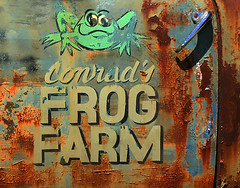 Conrad's Frog Farm (davidwilliamreed) Tags: old rusty crusty metal truck door handle writing letters patina decay textures peelingpaint iphone weathered oxidized oxidation