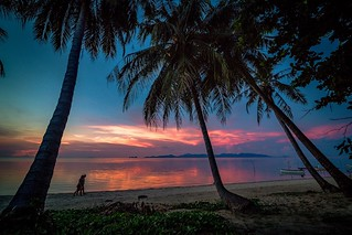 After sunset👌👌👌 Sunset Palm Tree Silhouette Unrecognizable People Couple Couple - Relationship Togetherness Friendship Tree Landscape Nature Beauty In Nature Vacations Tree Trunk Water Exotic Thailand Travel Destinations Outdoors O