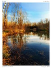 Etang (BerColly) Tags: france auvergne puydedome mirefleurs etang pond printemps spring eau water arbres trees ciel sky bercolly google flickr
