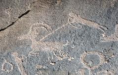 Petroglyphs / Sand Island Site (Ron Wolf) Tags: anthropology archaeology bearsearsnationalmonument nationalpark nativeamerican puebloan sandisland anthromorph anthropomorph bighornsheep bowandarrow hunt hunter hunting panel petroglyph rockart zoomorph utah blm