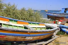 07-_MG_9889 barcos MB (marilenebittencourt) Tags: barcos riaformosa coresdeportugal marilenebittencourtphotos