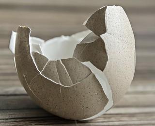 macro monday's theme: broken - egg