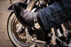 Harley-Davidson Motor Cycles (AdeRussell) Tags: harleydavidson germany munich bikes boot vehicles biker street harley streetphotography oberschleisheim bavaria de