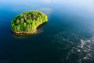 Not My Island