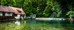 the turquoise spring (levibohnacker) Tags: germany blaubeuren swabian alpes mountains blautopf water nature landscape trees blue green travel travelling house spring potty blau river sea sight attractions summer sunlight sun turquoise aqua panorama