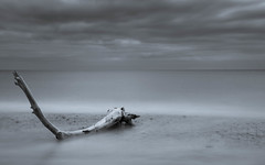 Coveinthe Beach (Charlie White) Tags: covehithe blackwhite longexposure leefilters bigstopper suffolkcoast shore seascape beach eastofengland nikon nikonphotography