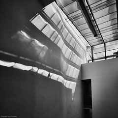 Four light bands (Furcletta) Tags: places europe italy ita nikond800 indoor architecture modernarchitecture museum blackwhite roof wall windows sunlight door shadow glass white black grey light streaks 20mm18g meran