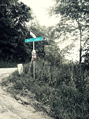 Lost (AmyEAnderson) Tags: galena illinois countryside lost intersection sign signpost devil monochrome trees vegetation isolated outdoor hilltop devils ladder rural road street creepy spooky