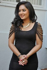 Indian Actress Nikesha Patel Hot Sexy Images Set-2 (94)