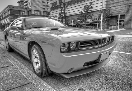 Dodge Challenger in black and white