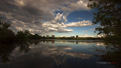 Mud lake,Ottawa (Photography by Ramin) Tags: mud lake ottawa wildlife wildbirds landscape reflection nature canada beauty water beautifull clouds blue sky trees ontario ngc