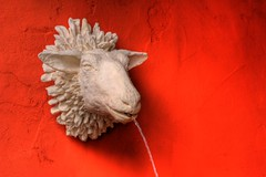 Song of the Sheep God (David K. Edwards) Tags: sheep statue fountain water stream head carving red orange wool